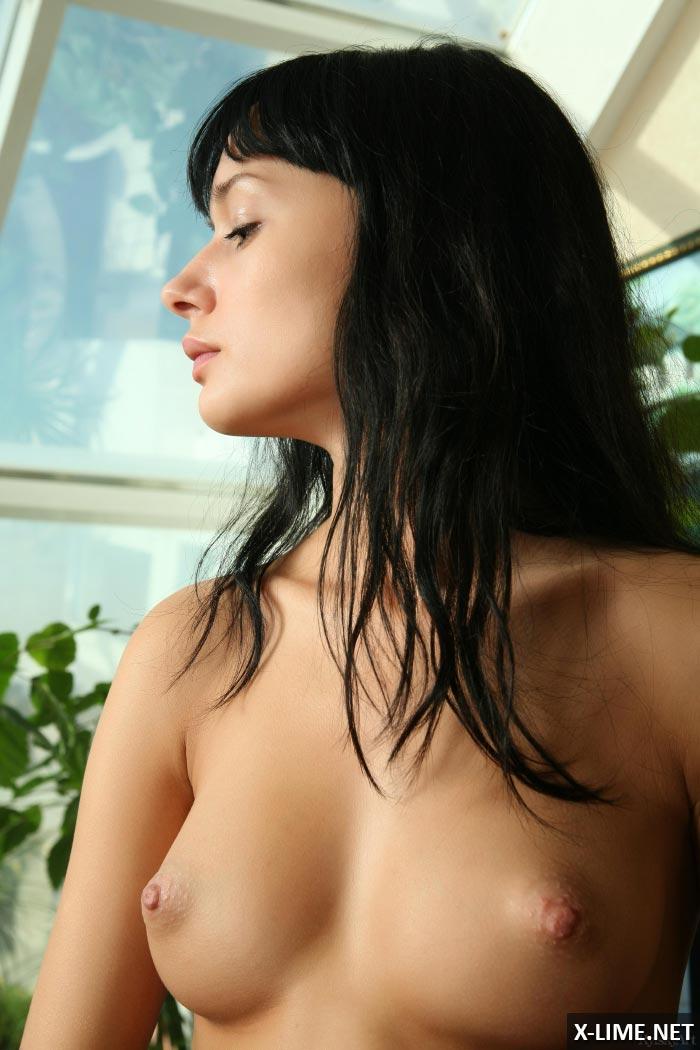 Стройная брюнетка показала большие сиськи