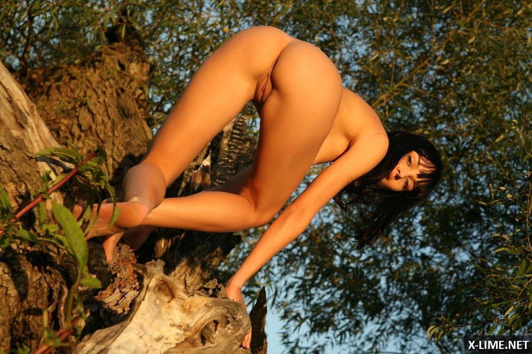 Голая брюнетка позирует на природе